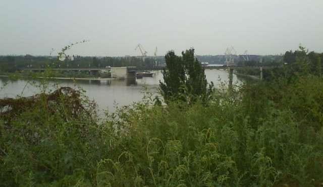 Вид на деревья, реку и мост первая фотография