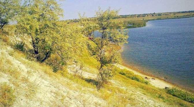 Порожнеча, камыши и река Ингул