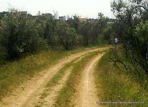 Эта дорога направо выходит на балку.