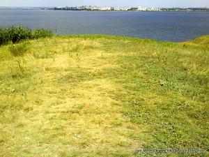 Протоптанная трава и последний комок земли.