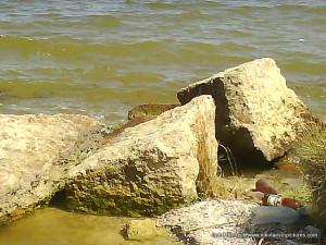 Я ступил на камни.