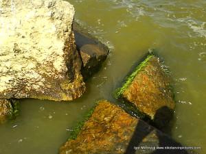 Я продолжаю маршрут по мокрым камням.