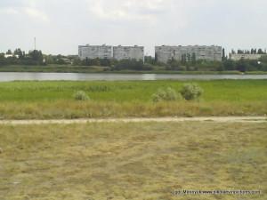 Аляуды, река Ингул, Водопой.