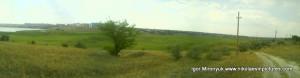 Вот как выглядят камыши в Панораме.